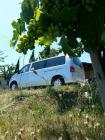 Cote De Provence Vineyards